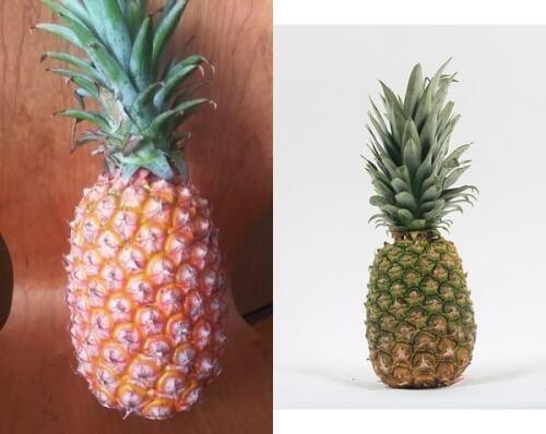 台湾パイナップルとフィリピン産パイナップル